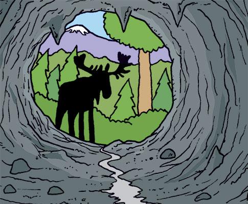 As The Deer Flies: Coming Soon!